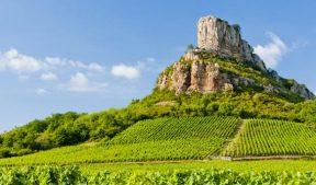 Seminar Burgundy in France